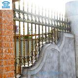 A prueba de herrumbre/antiséptico/alta calidad creó la cerca del hierro labrado