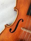 Glanz-Ende-Violinen mit Nizza Flamme auf Rolle