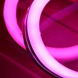 동적인 RGB 옥외 실리콘 밀어남 구부릴 수 있는 방수 LED 네온 코드 지구
