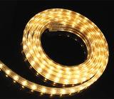 Bandes extérieures de Dimmable DEL de bande des éclairages LED DEL de la Chine