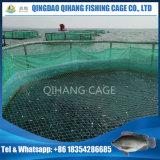 Tanque de peixes da aquicultura da gaiola de Agricultura do agrupador no mar profundo