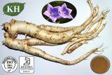 제조자 공급 자연적인 Balloonflower 추출 또는 Platycodon Grandiflorus