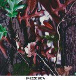 El árbol Wtp de Camo filma la hoja verdadera soluble en agua de las películas B42zzd187A Hydrographics