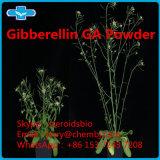 La gibbérelline poudre de haute pureté Ga Poudre pour usage agricole