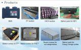 Профессиональные батарей для EV, Phev поставщика