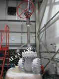 Valvola a saracinesca criogenica del cofano del gambo di applicazione lunga estesa di temperatura insufficiente