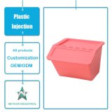 De aangepaste Vorm van de Injectie van de Bakken van de Opslag van het Gebruik van de Artikelen van het Huishouden Plastic