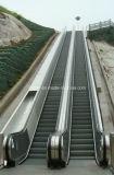 La nouvelle technologie Vvvf Escalator de plein air d'entraînement