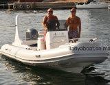 Liya 5.8m 10la gente china costilla Hypalon Barco Barco a la venta