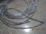 304 douche flexible en acier inoxydable flexible, EPDM, l'écrou en laiton, finition chromée, certificat de l'ACS