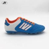 Футбол самого лучшего качества напольный обувает ботинки футбола для людей Zs-034TPU