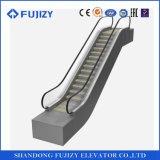 China-beste Lieferanten-energiesparende Fujizy kundenspezifische Rolltreppe