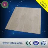 Revêtement faux de plafond sain d'épreuve de PVC de Deocrative
