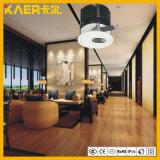 13W CREE LED Oval bañador de pared de las luces de pasillo