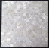 أبيض [فرش وتر] قشرة قذيفة 20*20 فسيفساء