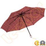 قوسيّة طيف على أحسن وجه مظلة صامد للريح قابل للانهيار ذاتيّة لأنّ ريح