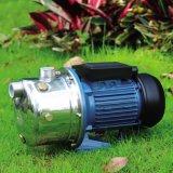 Aus rostfreiem Stahl selbstansaugende Wasser-Pumpe für den Garten, der Js 100 Pumpe bewässert