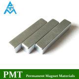 N45h de Magneet van het Neodymium van de Motor van 57*10*10 met Magnetisch Materiaal NdFeB
