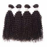 Выдвижение человеческих волос девственницы верхнего качества Dlme 10A курчавое