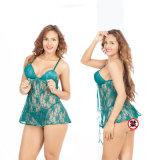 여자를 위한 중국 까만 레이스 섹시한 내복 투명한 Deisgn
