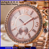 O logotipo personalizado mulheres Relógios de pulso de moda de relógio de quartzo para senhoras (WY-17004D)