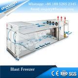 Explosão de baixa temperatura de conservação dos alimentos para congelador