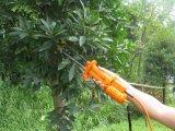Heiße Verkaufs-hohe Leistungsfähigkeits-Kaffeebohne-Sammeln-und Oliven-Ernte-Maschine