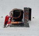 Thermostate를 가진 최대 450liters 태양 냉장고 냉장고 냉장고 DC 12V24V48V Bldcm 압축기를 위한 Purswave Bd45hc 압축기 압축 단위