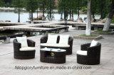 Mobilia esterna stabilita della Tabella di vimini del sofà del rattan del PE