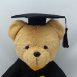 고등학교 대학 눈금 장난감 곰
