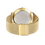 Form-Legierungs-GoldDw Art-Goldineinander greifen-Band-Uhr (DC-CL01)