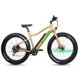 Bicicleta eléctrica Green Power 48V 500W Electric Bicicleta de Montaña