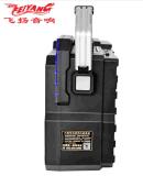 Feiyang/Temeisheng neues Stlye 5 Zoll beweglicher Bluetooth Lautsprecher SL05-02