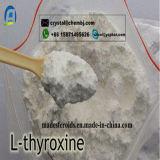 Het l-Thyroxine van de Steroïden van het Verlies van het Gewicht van de hoge Zuiverheid T4 het Zout van het Natrium voor de Groei 25416-65-3 van de Spier