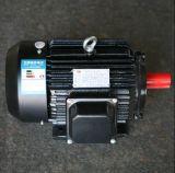 Fresatrice asse di rotazione verticale italiano di disegno di alta precisione del singolo