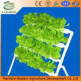 Crescente sistema della serra idroponica per la verdura