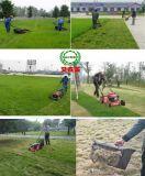 Jardin de l'essence de la faucheuse d'herbe poussant tondeuse à gazon Le jardinage domestique de la faucheuse Voiture de contrôle des mauvaises herbes