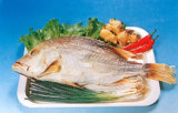 Dried Food - Salted Redfin Snapper