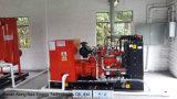 Membranen-Biogas-Lagune des HDPE 1*20000m3 Biogas-Digester/HDPE
