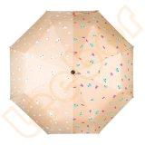女性の強い日曜日3の折る陰の傘