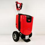 motorino piegante portatile elettrico del triciclo 48V/250W, motorino d'equilibratura di auto, E-Motorino