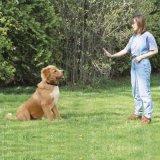 100% wasserdichte und nachladbare Hundeschlag-Muffe