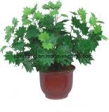 Planta Artificial Maply IVY deixe