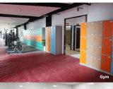 De Plastic Populaire Kast van de badkamers of van de Zaal van Sauna's met Slot