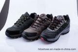 De beste Verkopende het Beklimmen Schoenen van de Veiligheid van Stijlen