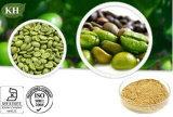 Gesamtchlorogensäuren des Qualitäts-grüne Kaffeebohne-Auszug-50%