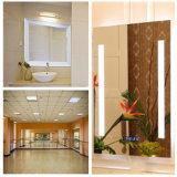 Grandi specchi parete/della stanza da bagno, specchi d'argento per lo specchio decorativo