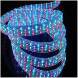 Mehrfarbenseil-Licht CER RoHS der 4 Draht-flaches Vertikale-LED