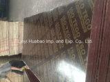 20mm*610*2500 브라운 Film Faced Plywood Poplar Core WBP Glue