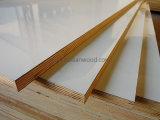 Переклейка причудливый мебели высокой ранга HPL пожаробезопасная для украшения и кухни